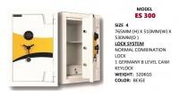 Model: ES300