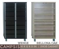 Model: CAMPSIS