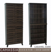 Model: CAMASSIA