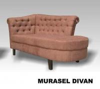 Model: MURASEL