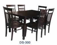 Model: DS-300  (4's & 6's)